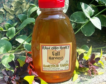 Raw Honey - Ohio Fall Harvest - 16 ounce jar