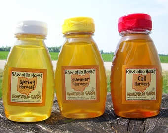 Raw Honey Sampler - Spring, Summer, and Fall Honey - Three 8 ounce bottles