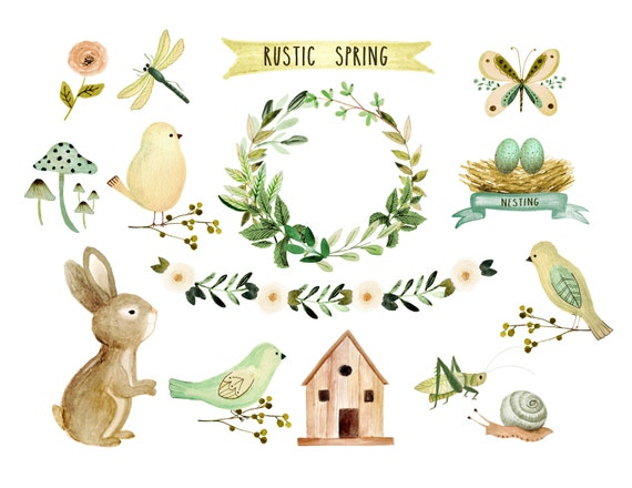 Floral Clipart Spring Rustic Baby
