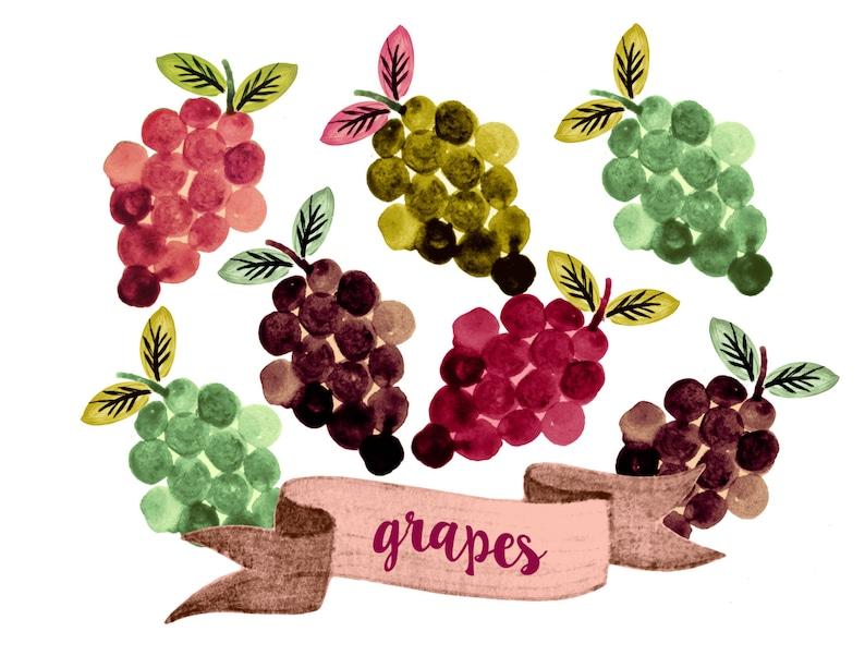 Grapes clipart fruit clipart watercolor fruit clipart   Etsy (794 x 613 Pixel)