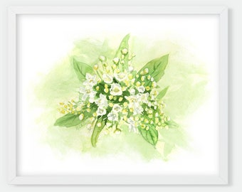 White & Green Flower Watercolor Print