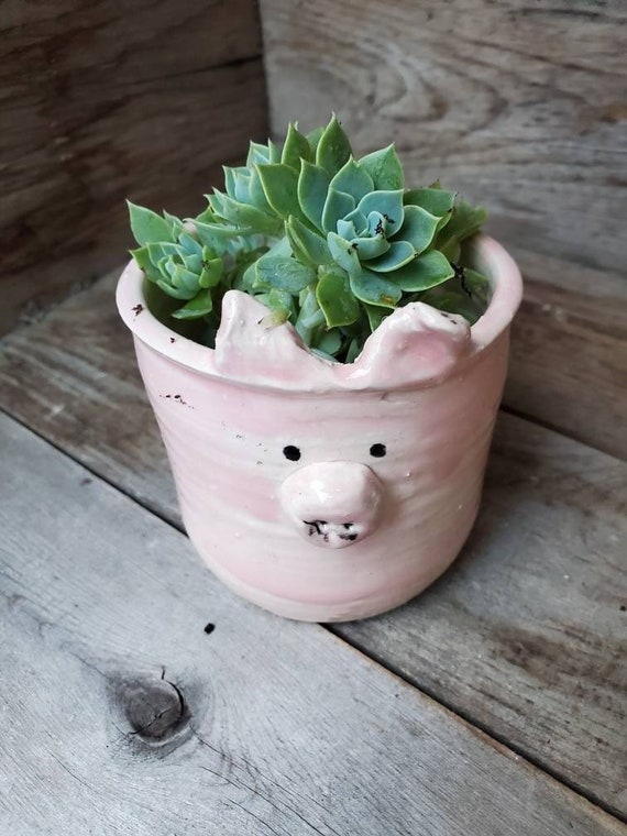 Pottery handmade pink pig planter catch all for airplants or succulents great  gift