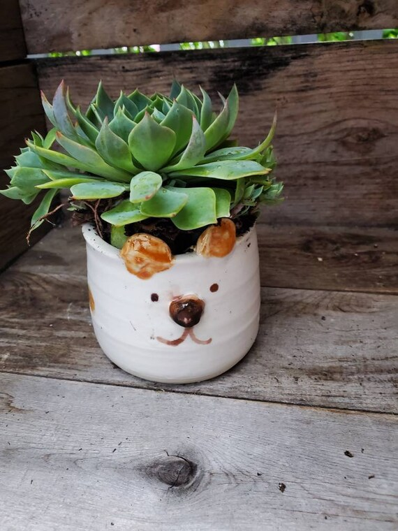 Pottery handmade puppy dog mini planter succulent planter catch all  boho perfect for airplants or succulents great  gift