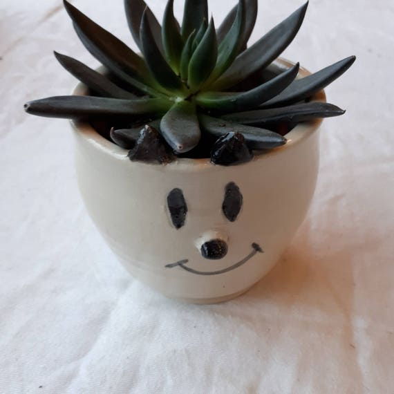 Pottery handmade happy skunk whimsy face  planter catch all  boho perfect for airplants or succulents great  gift