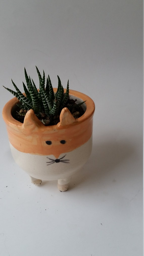PotteryRed Fox  planter small bowl cup catch all  boho perfect for airplants or succulents ON SALE  gift