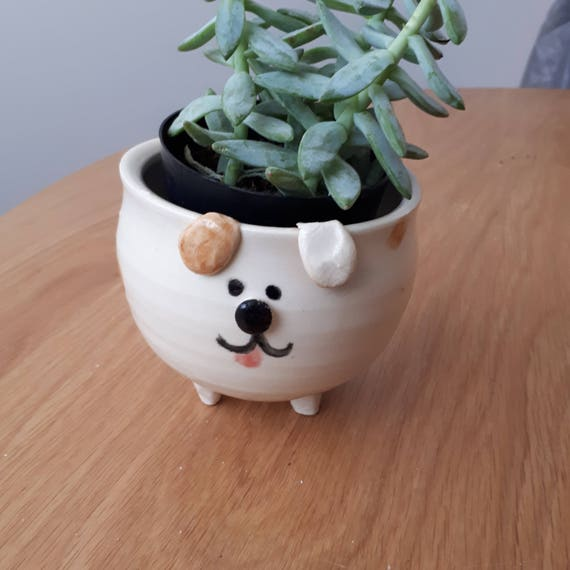 Pottery puppy dog catch all planter boho perfect for airplants or succulents great gift under 25