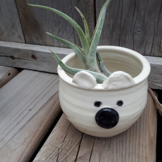 Pottery Polar Bear  planter small bowl cup catch all animal sculpture perfect for airplants or succulents ready to ship