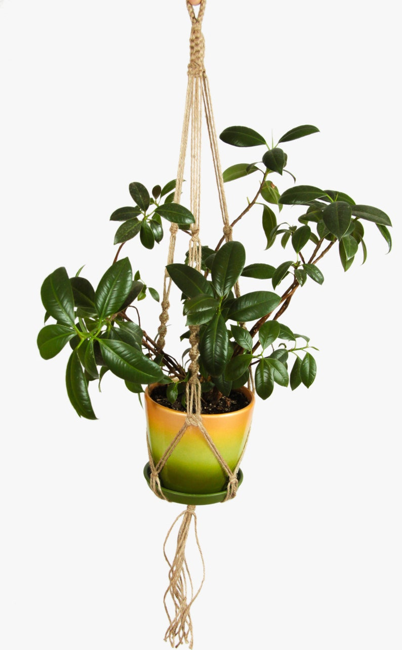 Jute macrame plant hanger Hanging planter Rustic rope planter Bohemian indoor planter Scandinavian style home decor Pot holder Boho decor