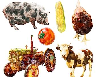 Printable FARM CLIP ART - pig, chicken, corn, tomato, tractor, cow, Digital Download, EvisionArts
