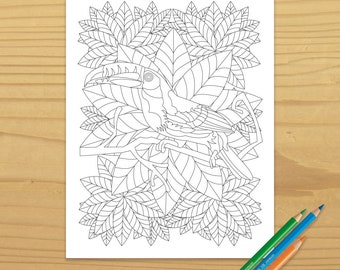 Printable TOUCAN COLORING PAGE, Digital Dowload, EvisionArts