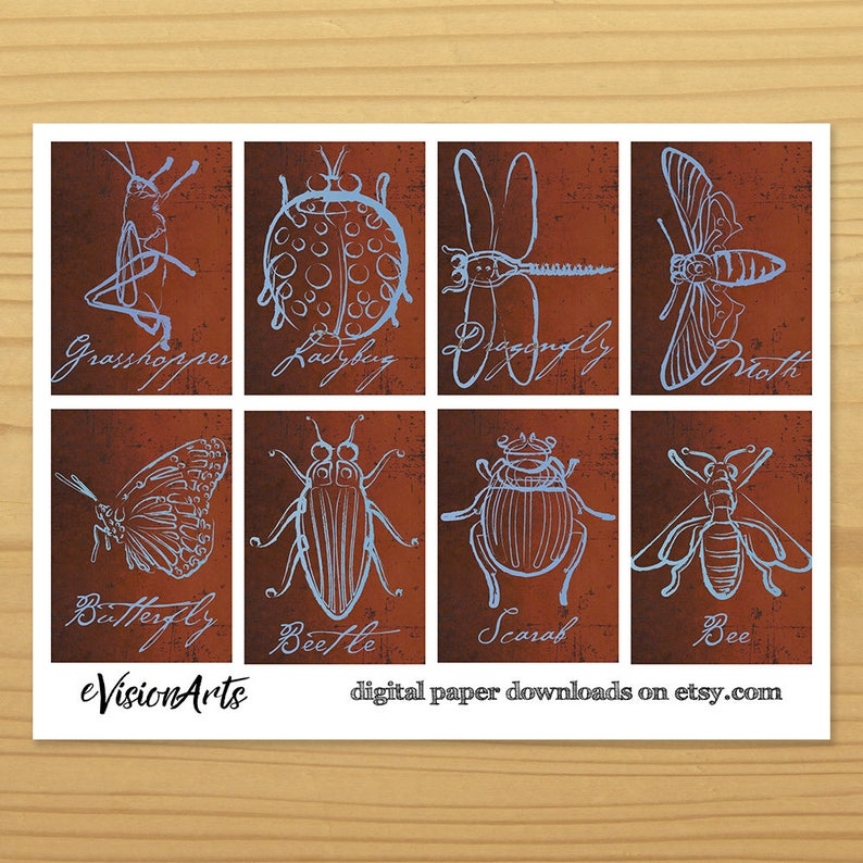 Insect Gift Tags Insect Art Tags Bug Gift Tags Bug Art image 0