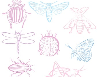 Printable Pastel INSECT CLIP ART - Line Art, Color, Digital Download, EvisionArts