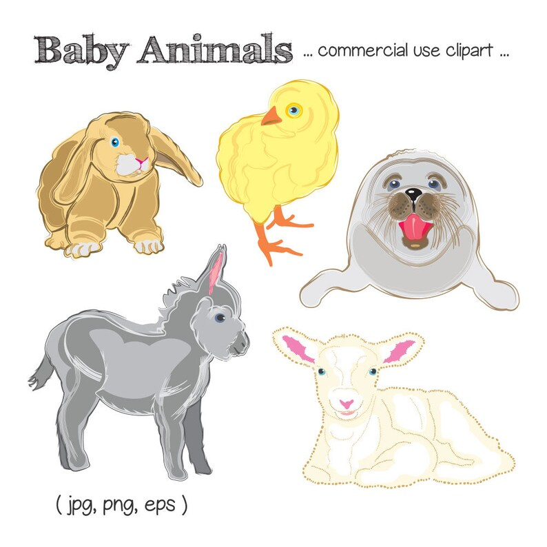 Baby Animal Clipart Cute Animal Clip Art Baby Seal Clipart image 0