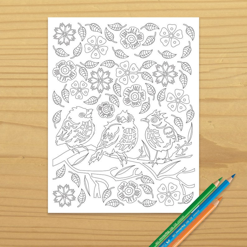 Bird Coloring Page Robin Coloring Page Songbird Coloring image 0