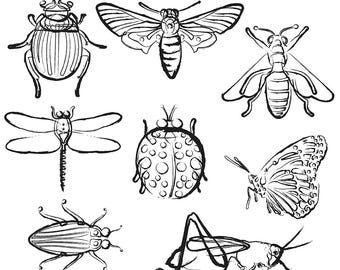Printable INSECT CLIP ART - Beetle, Bee, Dragonfly, Ladybug, Butterfly, Grasshopper, Digital Download, EvisionArts