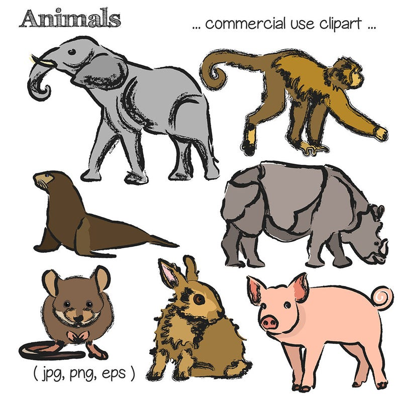 Sketched Animals with Color Clipart Animal Clipart Animal image 0
