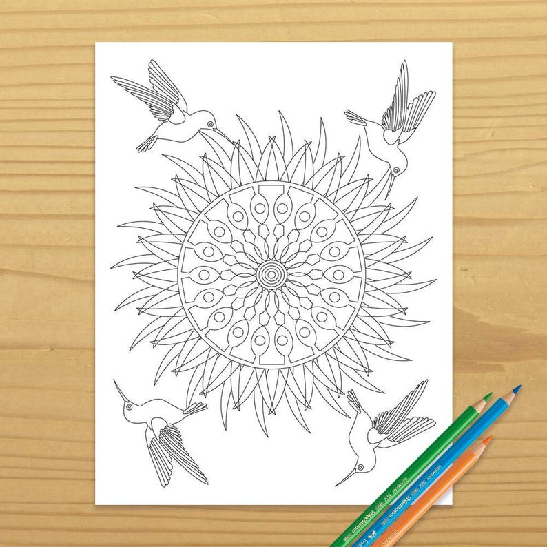 Hummingbird Coloring Book Page Bird Coloring Page Adult image 0