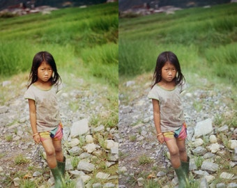 SUMMER FIELDS Photoshop Curve Preset // Subtle Warm Tones Curve, Photo Editing, Photoshop Curve, Photoshop Filters, Photoshop Effects