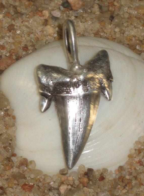 24  pendentifs en dent de requin fossile