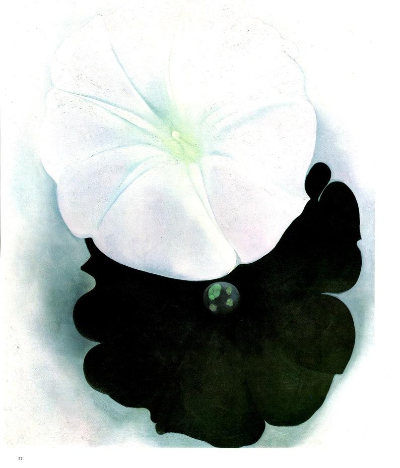 Georgia O Keeffe Black Petunia White Morning Glory I Etsy