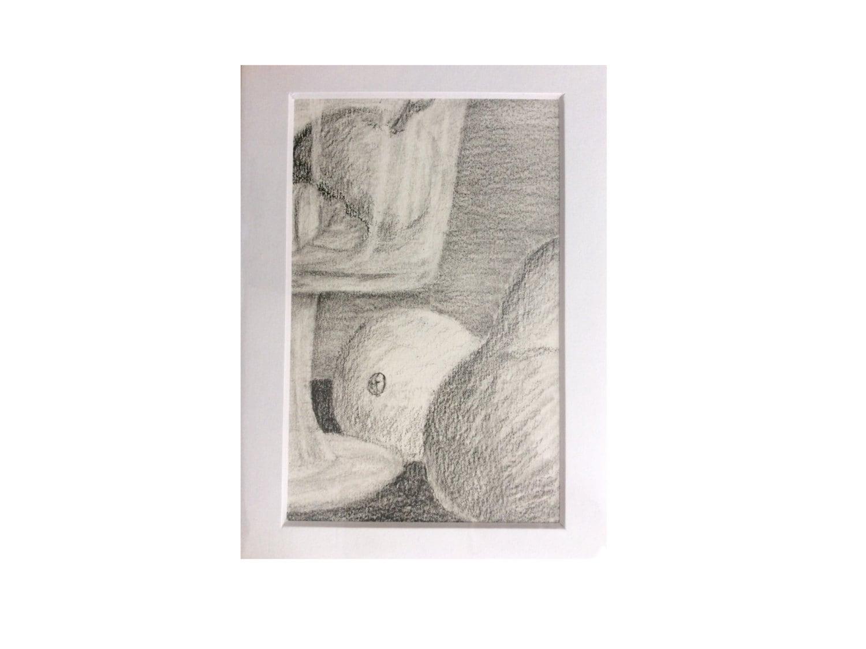 Original Bleistiftzeichnung 4 x 6 auf 5 x 7 verfilzt Obst