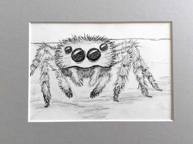 Original 5 x 7 Graphit-Zeichnung fuzzy Spinne verfilzt bis 8 x   Etsy