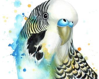 Parakeet PRINT | watercolor bird art, budgie, bird illustration, bird decor, bird lover art, parakeet, bird wall art, gift, blue and yellow