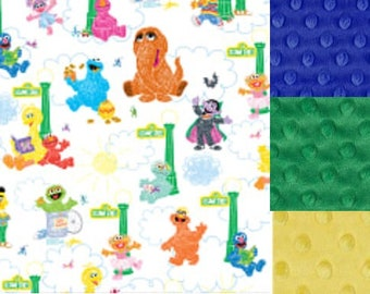 Personalized Sesame Street Characters Minky Baby Blanket /Lovey/Taggie/ Stroller Blanket/Shower Gift FREE SHIPPING