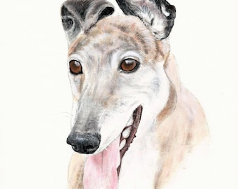 """A4 Greyhound Print called """"Rupert"""""""