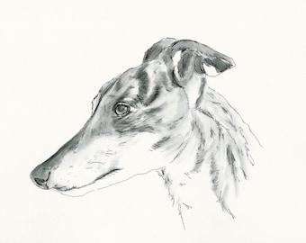"A4 Greyhound Print called ""Tiggy"""