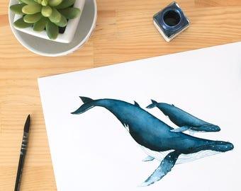 Baby whale, baby whale print, whale nursery, Whale art print, whale print, whale wall art, watercolor whale, Blue Whale print
