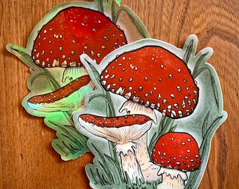 """Mushroom Stickers - Holographic and Matte finishes - Amanita Muscaria - 4x4"""" di-cut from original drawn design / waterproof"""