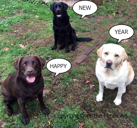 Three Labradors NEW YEARS Photo Card Handmade Greeting