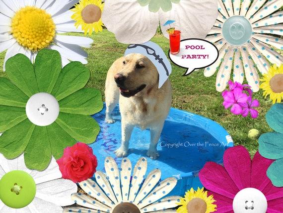 Dog Card Blank Pool Party Invite Card Labrador In Swimming Cap Invites You To Celebrate