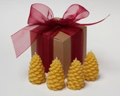 Mini Pine Cone Beeswax Candle - Gift set - 4 Pine Cones + 1 FREE