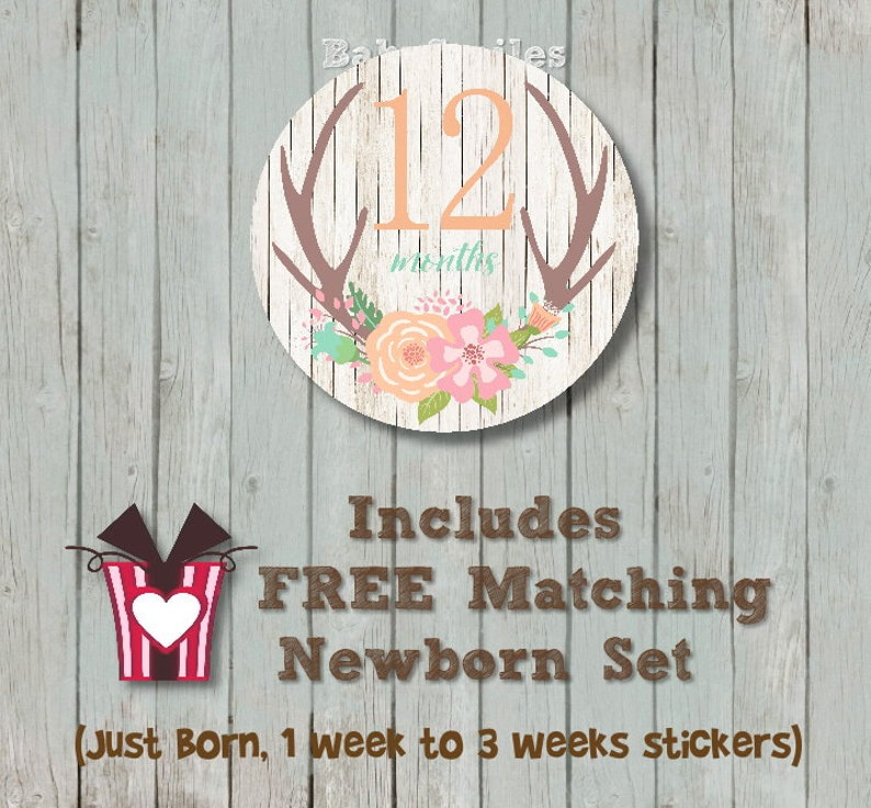 FREE GIFT Floral Antler Monthly Baby Stickers Baby Month Stickers Baby Girl Month Stickers Monthly Sticker Monthly Milestone Floral Woodland