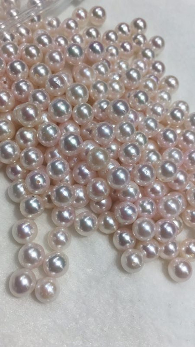 14X14MM AAA PERFECT black shell pearl earrings 14K GOLD