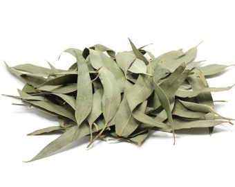 ORGANIC EUCALYPTUS LEAVES Dried Bulk Whole or Shredded Bulk Natural Air Purifier Respiratory Remedy Decongestant Sinus Throat Soother Incens