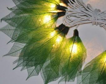 Green  Champaka flowers string lights for party & decoration (20 bulbs), fairy lights