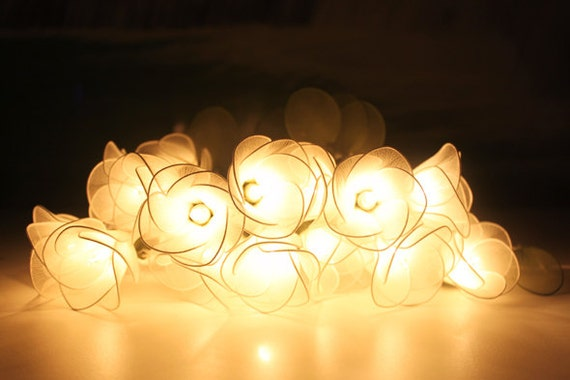White flower string lights for party and decoration 20 bulbs etsy image 0 mightylinksfo