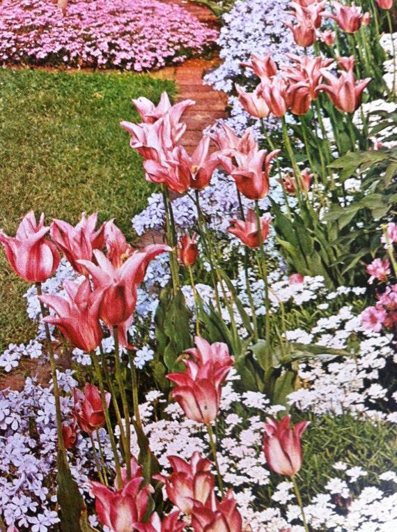 Vintage Garden Book Better Homes And Gardens Gardening Book Etsy