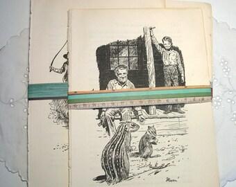 5 Vintage Sagebrush Filly Book Pages* Planner Accessories*Scrapbook Supply*Decoupage Paper*Journal Ephemera*Junk Journal*Paper Ephemera*