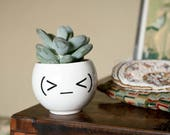Minimalist Planter, Funny Ceramic Plant Pot, Emoji Face Plant Holder