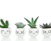 Funny Emoji Planters, Minimalist Plant Holders with Japanese Emoticons, Quirky Planters Set