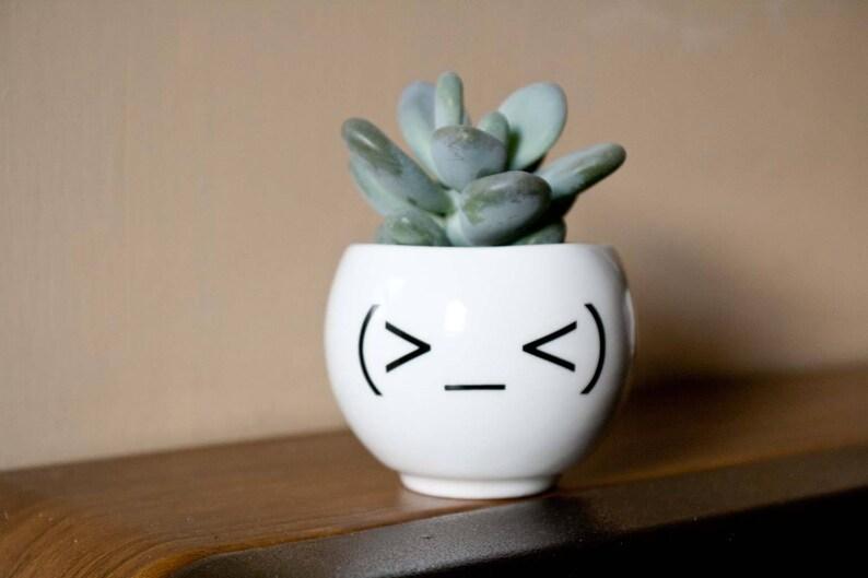 Emoji Face Plant Holder Funny Ceramic Plant Pot Minimalist Planter