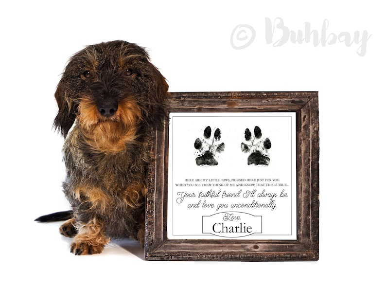 Faithful Friend Poem Gift from Puppy Dog Kitten or Cat to image 0