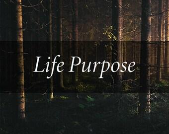 Life Purpose Tarot Reading