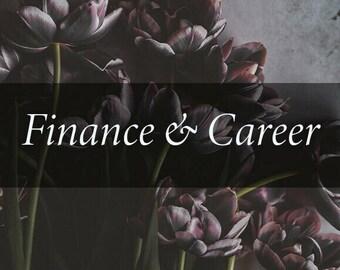 Finance and Career Tarot Reading
