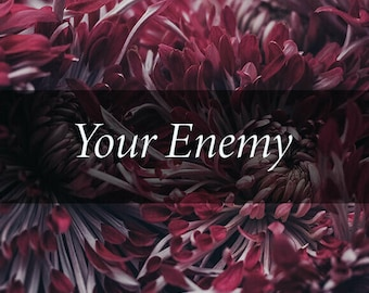 Your Enemy Tarot Reading