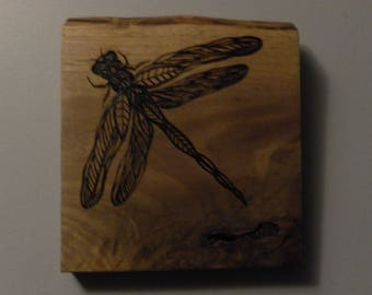 Dragonfly portrait pyrography made to order specially for Rebecca J